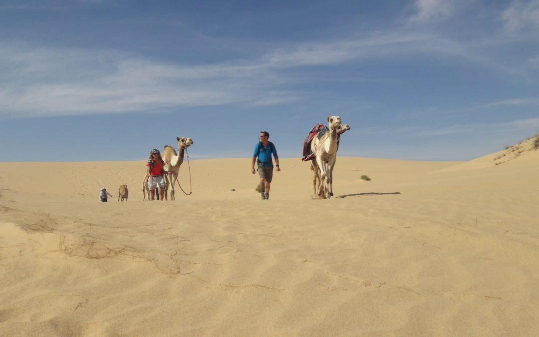 Leading Camels Back to Base
