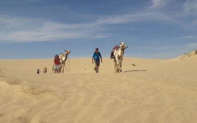 Leading Camels Back to Base